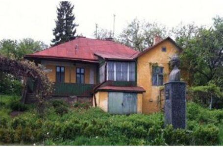 """Stadiul amenajării Casei Memoriale """"Aron Pumnul"""" – subiect de interpelare adresată Departamentului pentru Românii de Pretutindeni"""