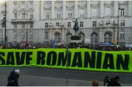 Marș impresionant la Viena pentru salvarea pădurilor din România