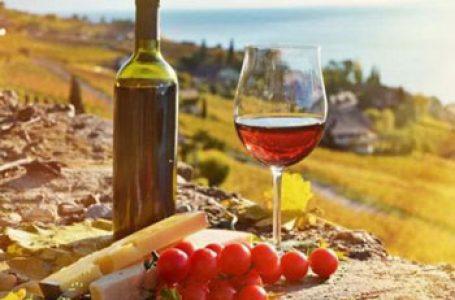 Basarabia în topul celor mai bune destinaţii turistice vinicole din lume