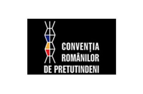 Convenția Românilor de Pretutindeni în Parlamentul României
