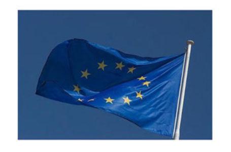 DECLARAȚIE din Parlamentul European: UE nu va tolera să fie făcută țap ispășitor pentru eșecurile Guvernului R. Moldova