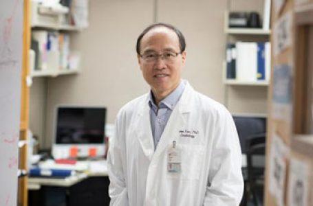 Profesorul Zhen Yan de la Universitatea din Virginia (SUA): Un antioxidant ne va feri de forme severe ale bolii COVID-19 şi oricine îl poate obţine. Este simplu: faceți sport!