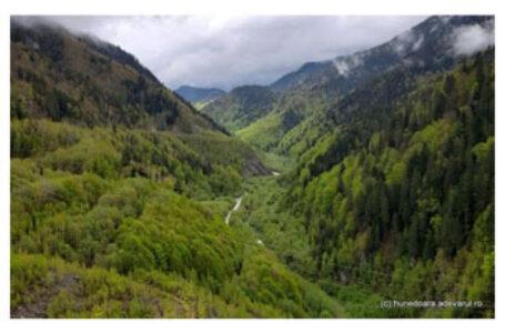 Daniel Guță: Cum au fost cedate 10.500 de hectare în Retezat unor austriece. Şirul de nereguli confirmate de justiţie