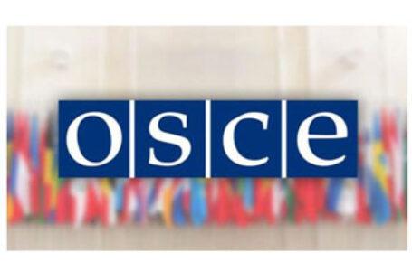România a cerut la Adunarea Parlamentară a OSCE rezolvarea conflictului transistrean cu respectarea suveranității și integrității R. Moldova