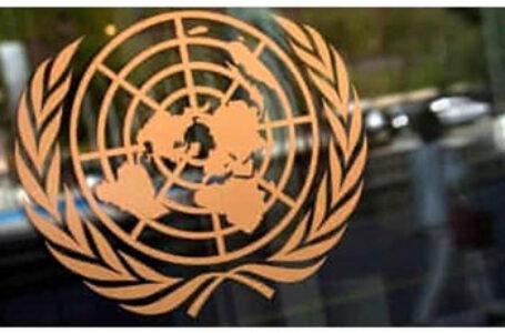 Grace Melton: Distorsionarea și ideologizarea drepturilor omului, la Organizația Națiunilor Unite