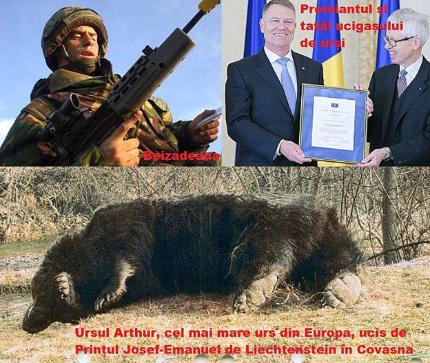 Românii SE REVOLTĂ după uciderea ursului Arthur de către prințul străin al cărui tată l-a premiat pe Klaus Iohannis